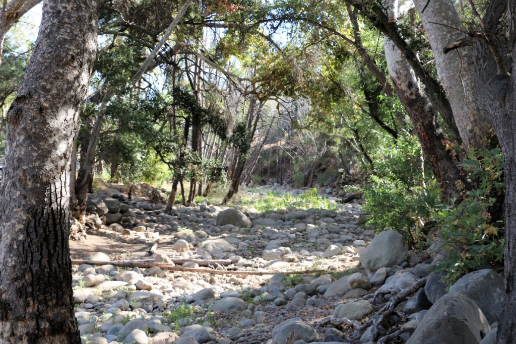 Outdoor Adventures: Top 5 Things to Do at Lake Casitas