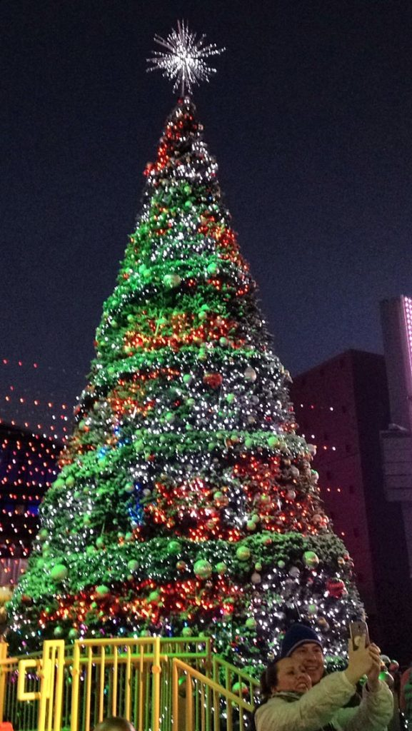 Christmas Trees in Eastern Europe - Roads and Destinations, roadsanddestinations.com