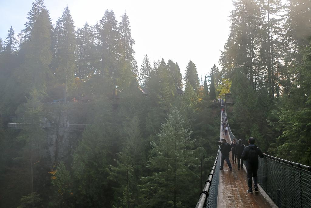 The Famous Capilano Suspension Bridge