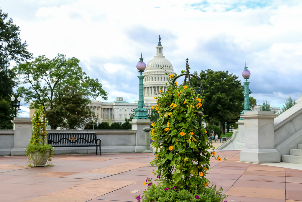 Washington, D.C. - Roads and Destinations, roadsanddestinations.com