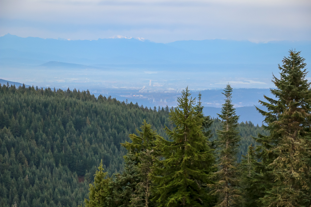 Gorgeous View from Grouse Mountain