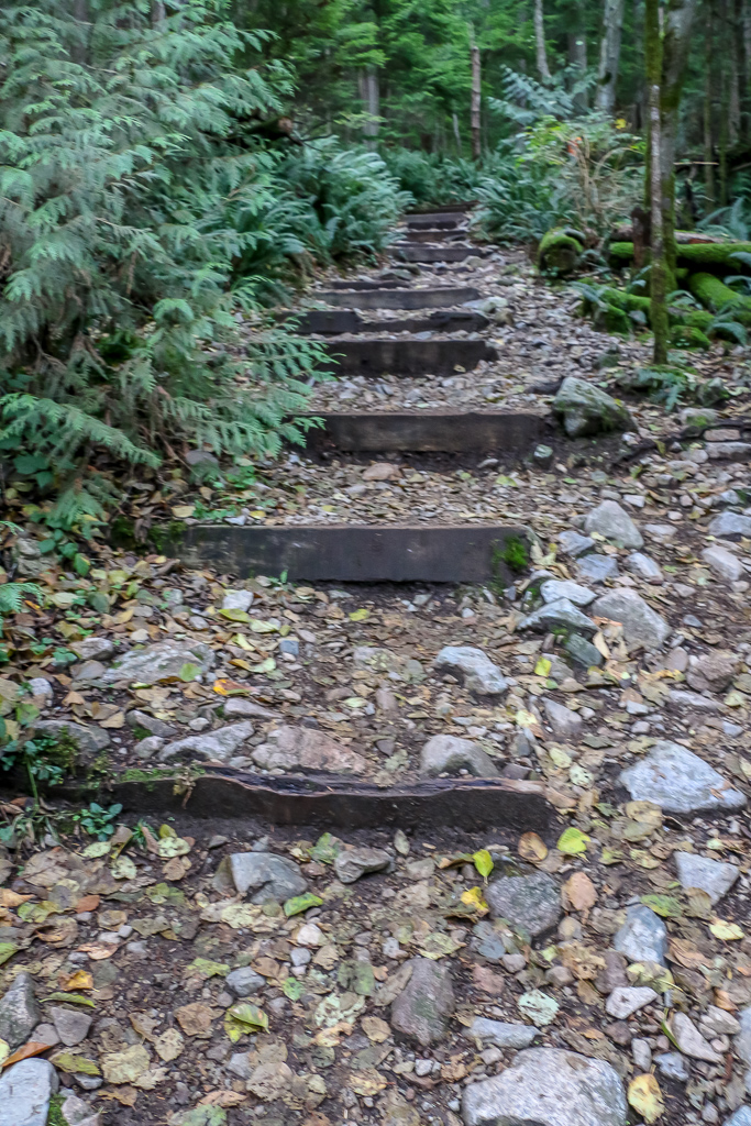 Grouse Grind - one of most intense hiking trails in the North Vancouver
