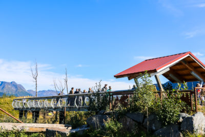 Visit the Alaska Wildlife Conservation Center - Roads and Destinations, roadsanddestinations.com