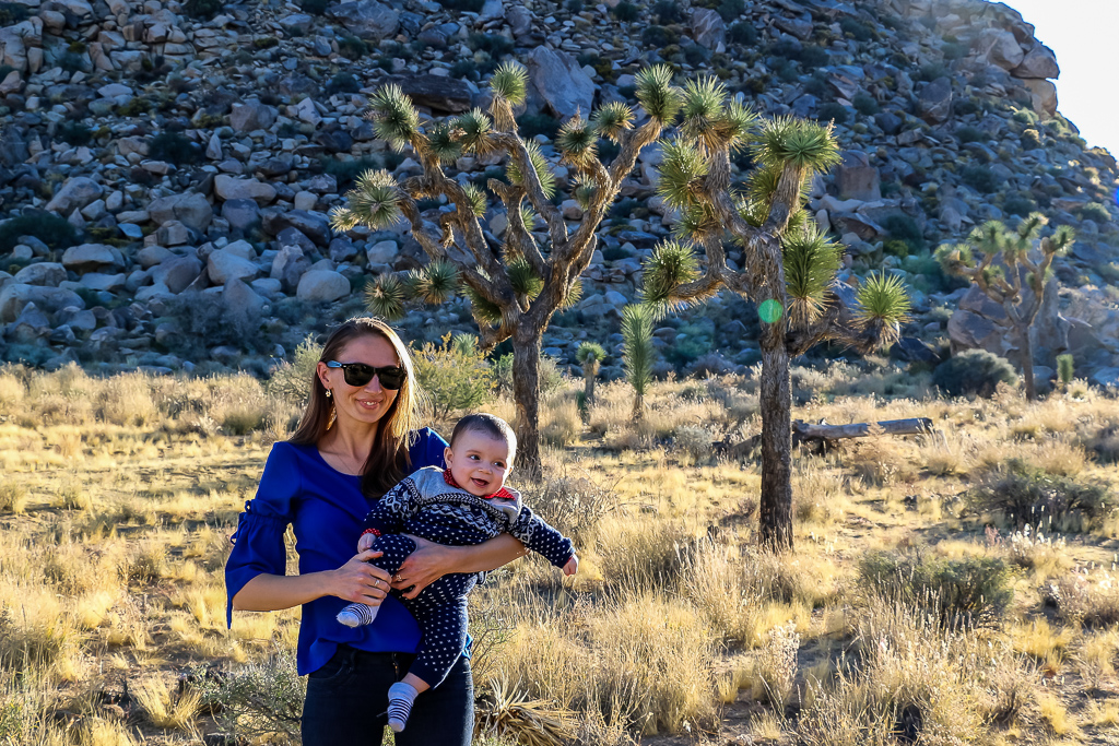 Exploring Joshua Tree National Park for the first time
