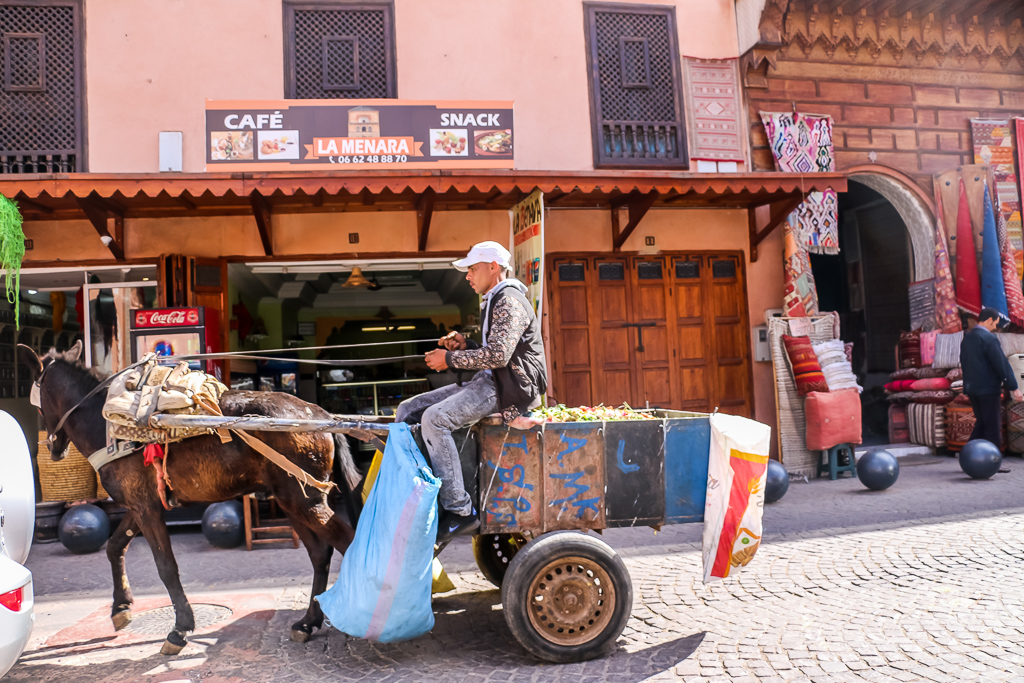 Predominent type of transportation in the Medina