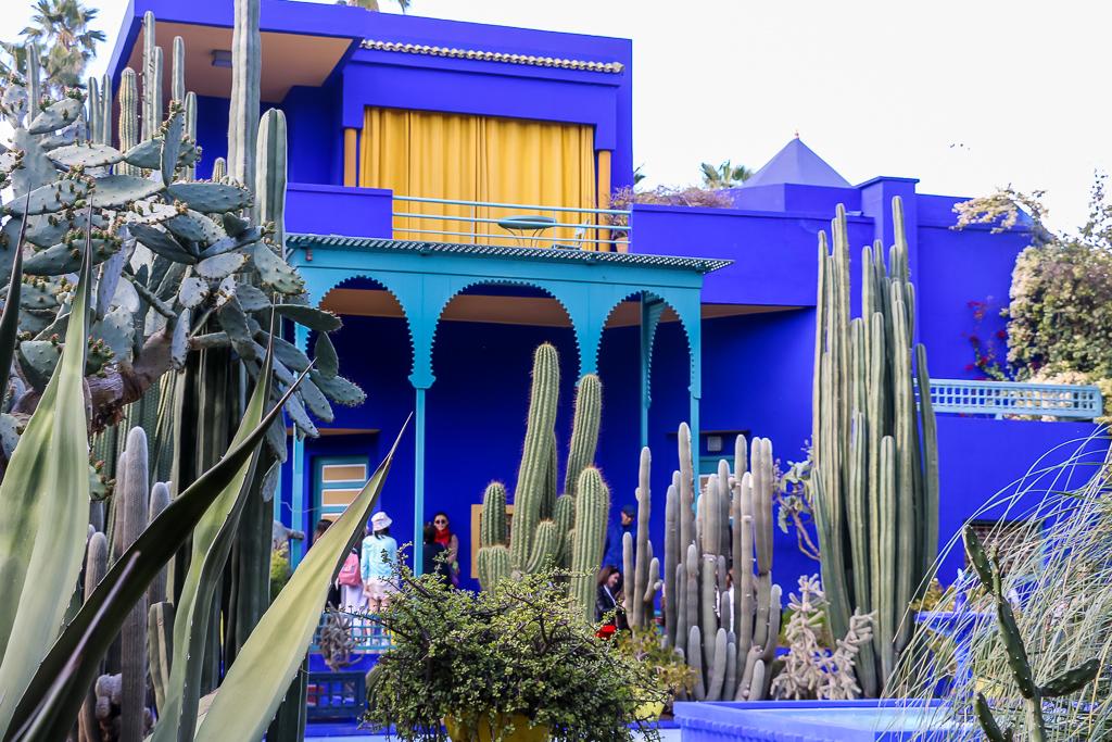 Vibrant colors of Majorelle Garden