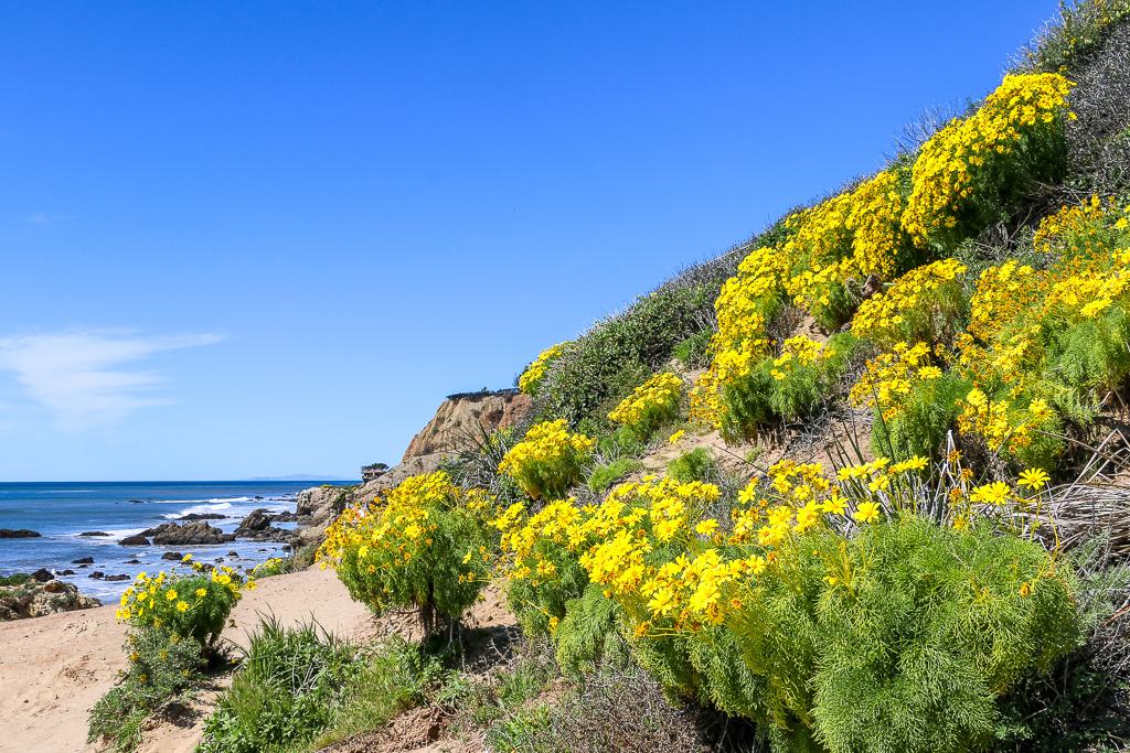El Matador Beach, roadsanddestinations.com