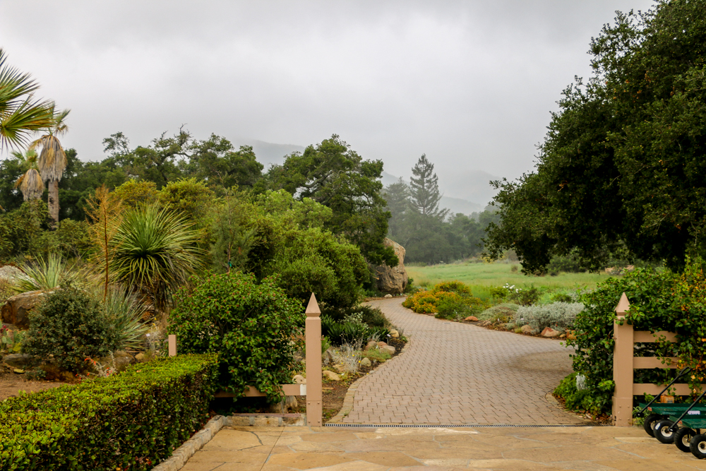Santa Barbara Botanic Garden is Nothing Short of a National Park, roadsanddestinationa.com