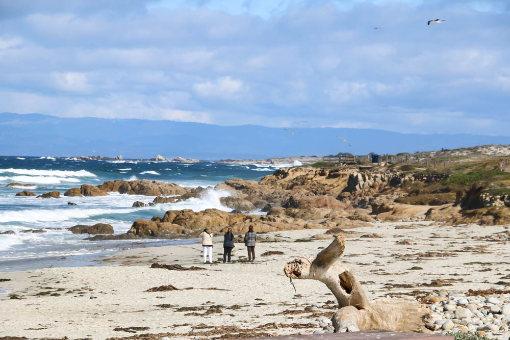 20 Pictures to Inspire You to Visit 17-Mile Drive, roadsanddestinations.com