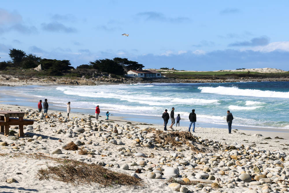 20 Pictures to Inspire You to Visit 17-Mile Drive. roadsanddestinations.com