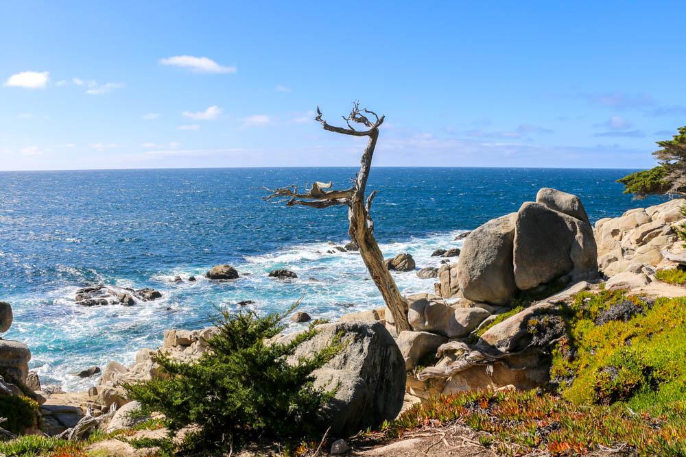 Monterey, roadsanddestinations.com