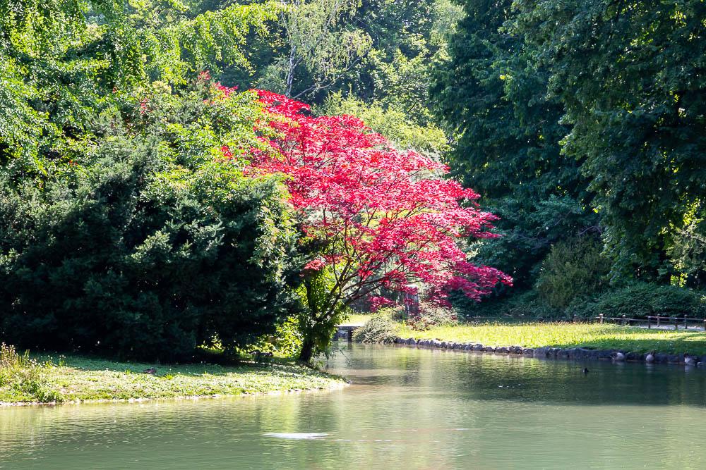 The Japanese Garden, Munich, roadsanddestinations.com