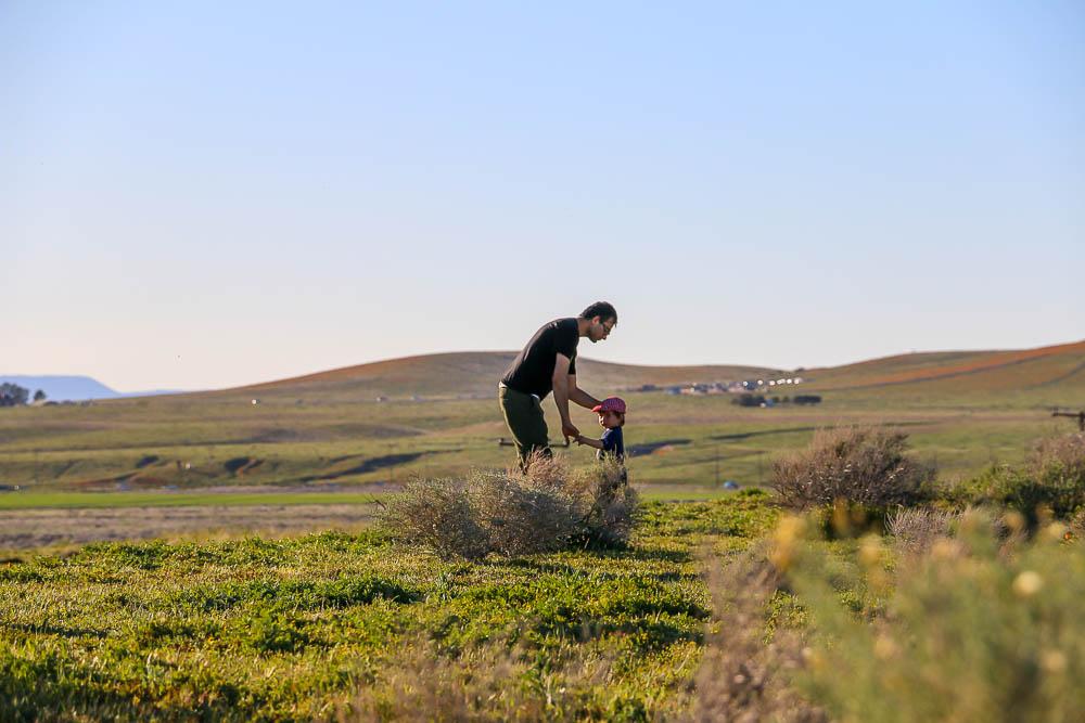 Antelope Valley, www.roadsanddestinations.com