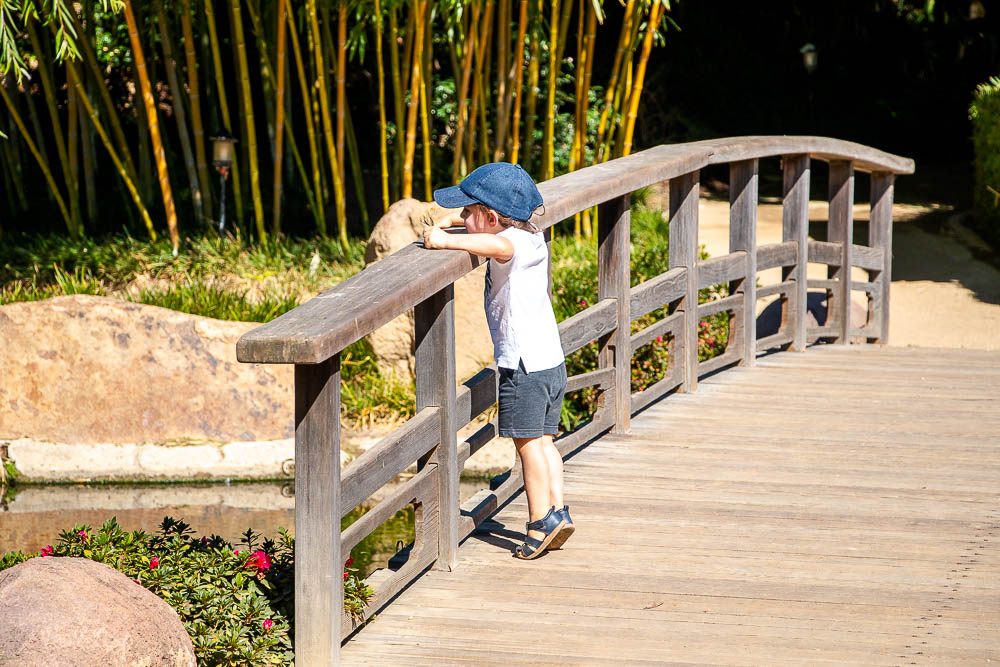 The Best Places in Los Angeles to Nurture Love for Nature in Kids. www.roadsanddestinations.com