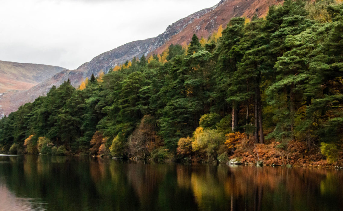 Forty Shades of Green, Ireland itinerary, Glendalough | Roads and Destinations, roadsanddestinations.com