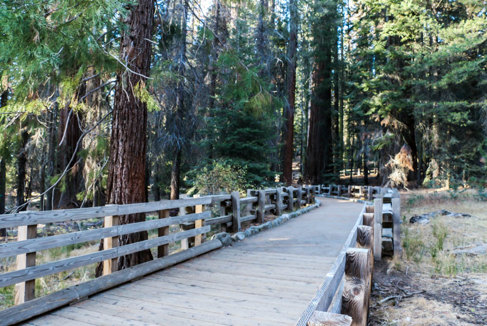Visit Sequoia National Park, www.roadsanddestinations.com