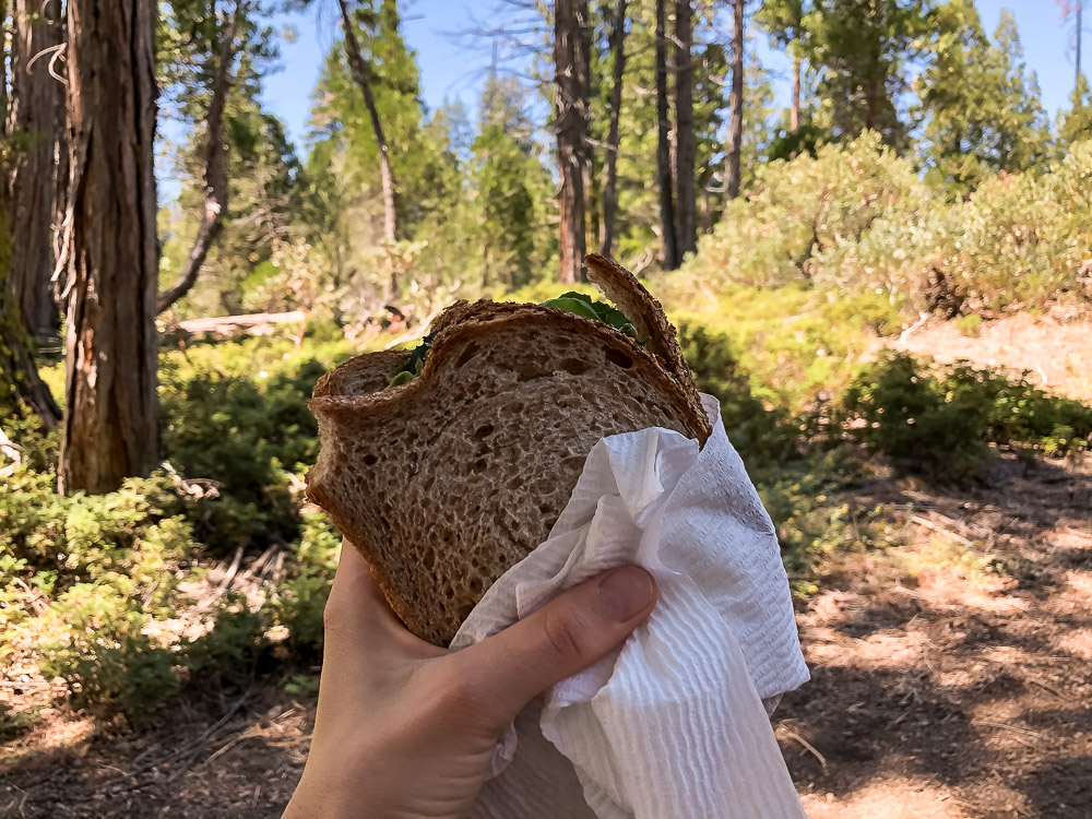 Lunch in Sequoia National Park - Roads and Destinations - roadsanddestinations.com