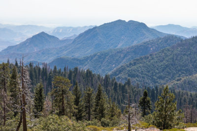 Where to Stay in Sequoia and Kings Canyon - Roads and Destinations - roadsanddestinations.com
