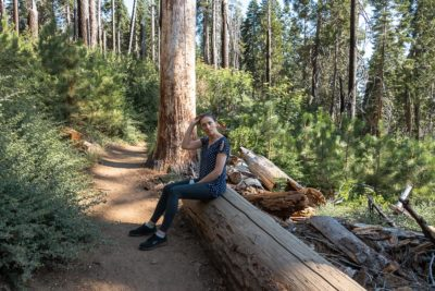 Where to Stay in Sequoia and Kings Canyon - Roads and Destinations roadsanddestinations.com