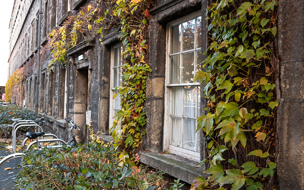 Visit Trinity College Dublin - Roads and Destinations, roadsanddestinations.com.