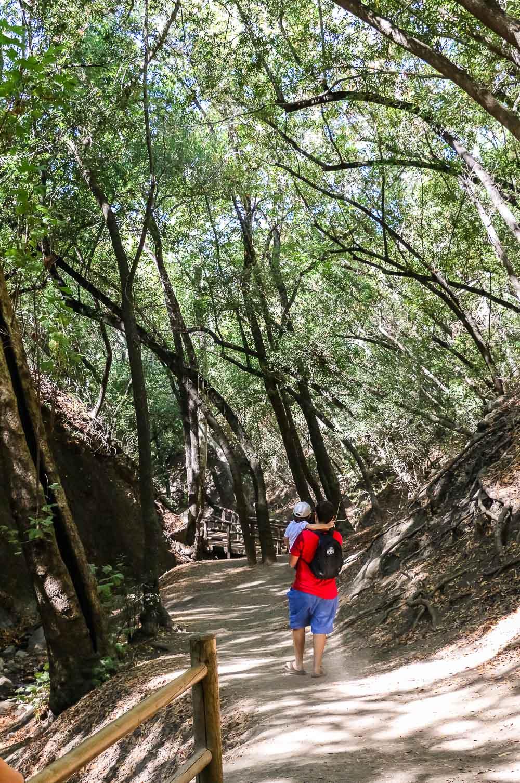 Visit Nojoqui Falls - Roads and Destinations, roadsanddestinations.com