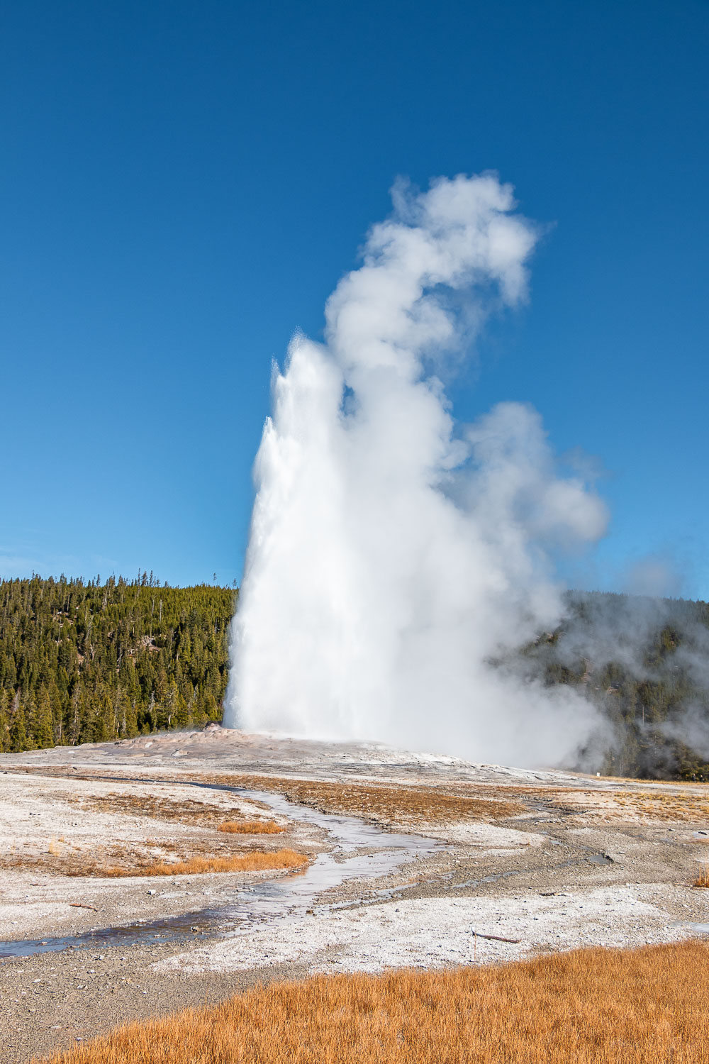 First visit to Yellowstone - Roads and Destinations. - roadsanddestinations.com