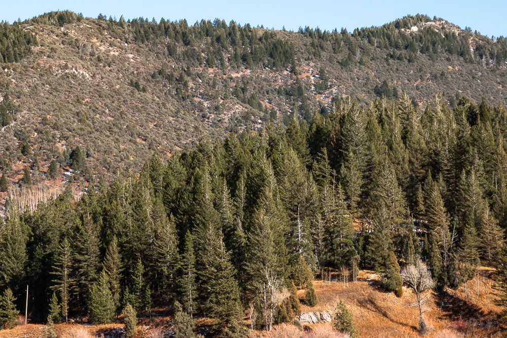 Boise to Yellowstone Road Trip - Roads and Destinations__ roadsanddestinations.com.