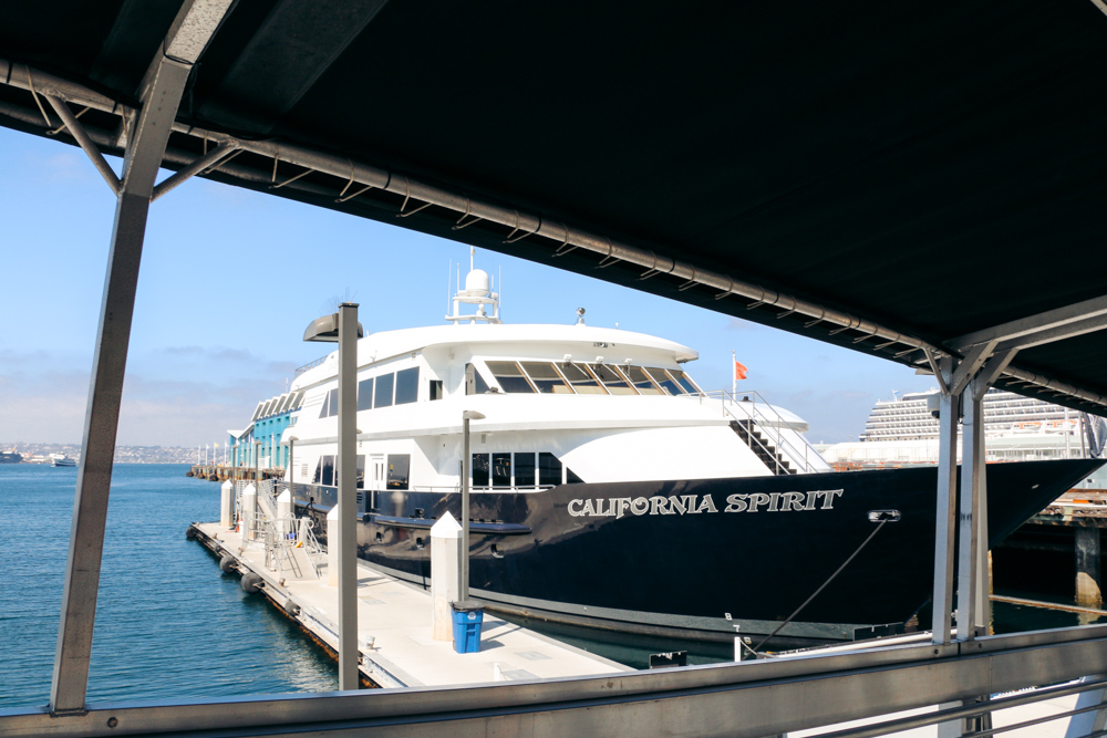 San Diego Harbor Cruise - Roads and Destinations