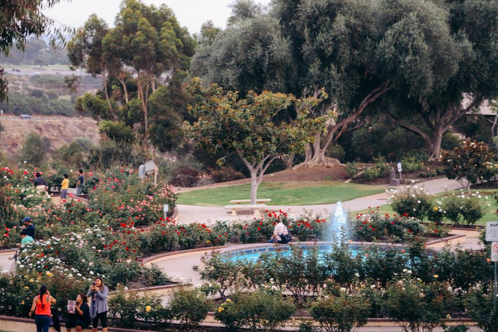 Inez Grant Parker Memorial Rose Garden - Roads and Destinations