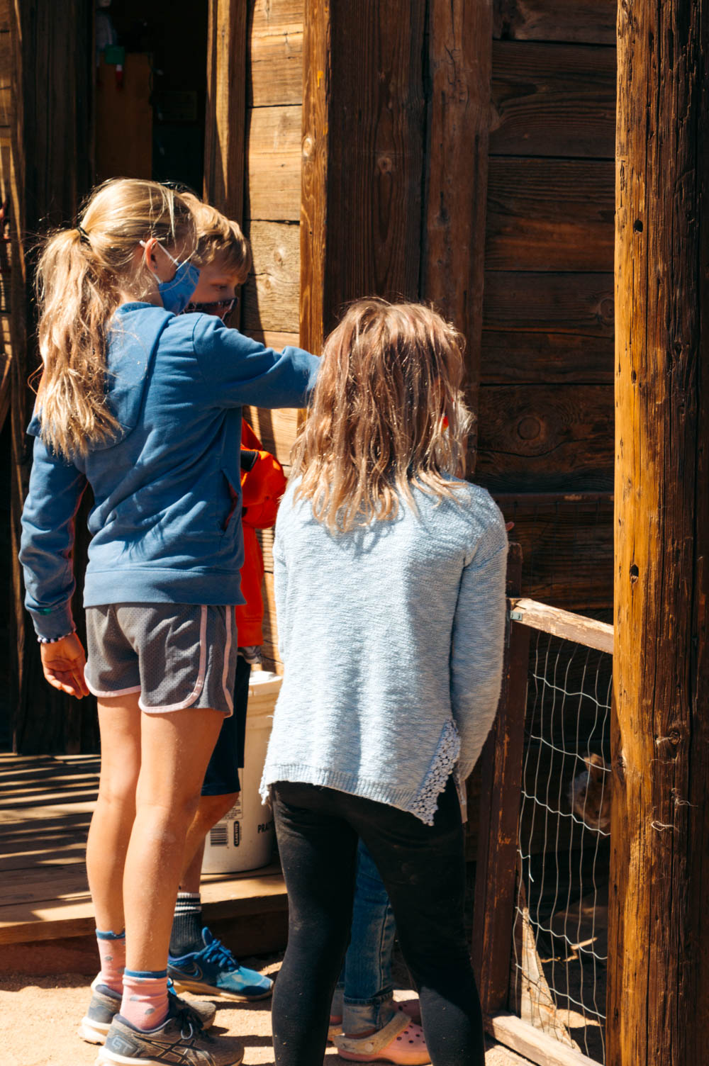 Petting zoo in Pioneertown- Roads and Destinations