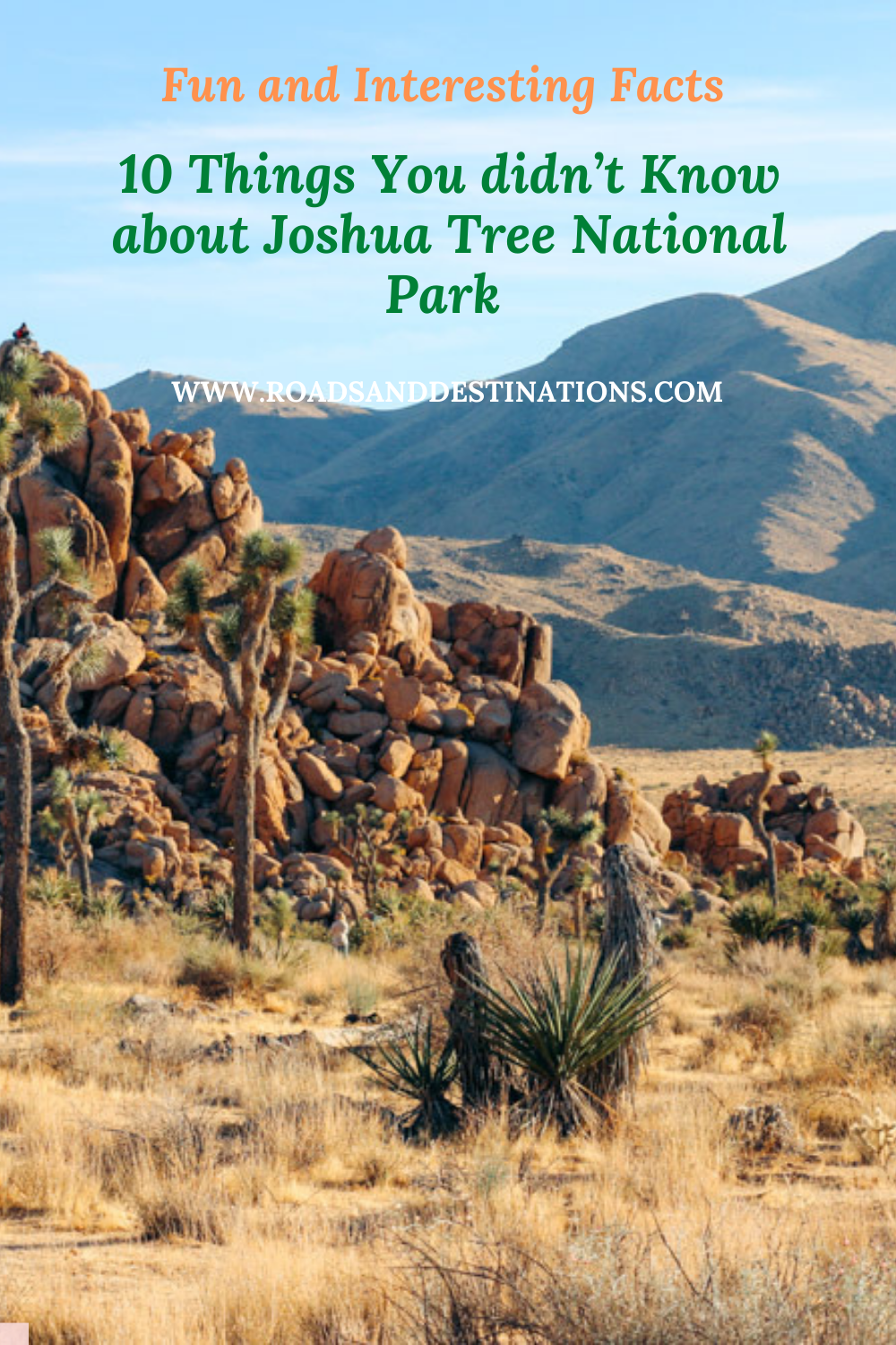 Things to know about Joshua Tree National Park - Roads and Destinations