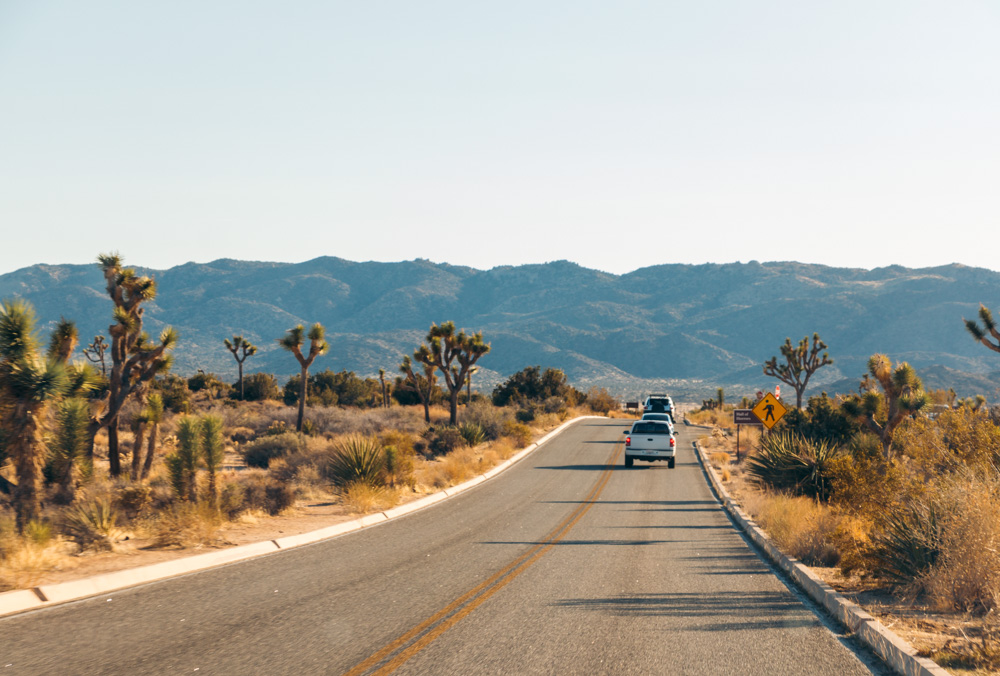 Where to stay in Joshua Tree National Park - Roads and Destinations