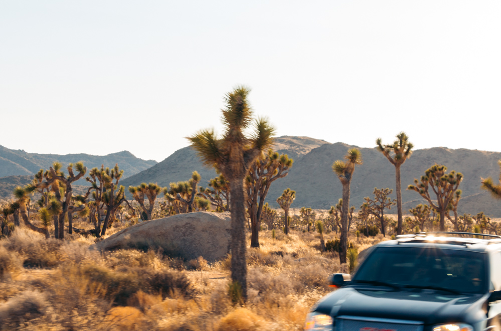 Camping in the desert - Roads and Destinations