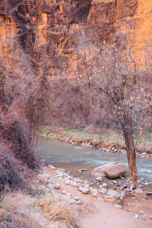 Zion National Park - Roads and Destinations