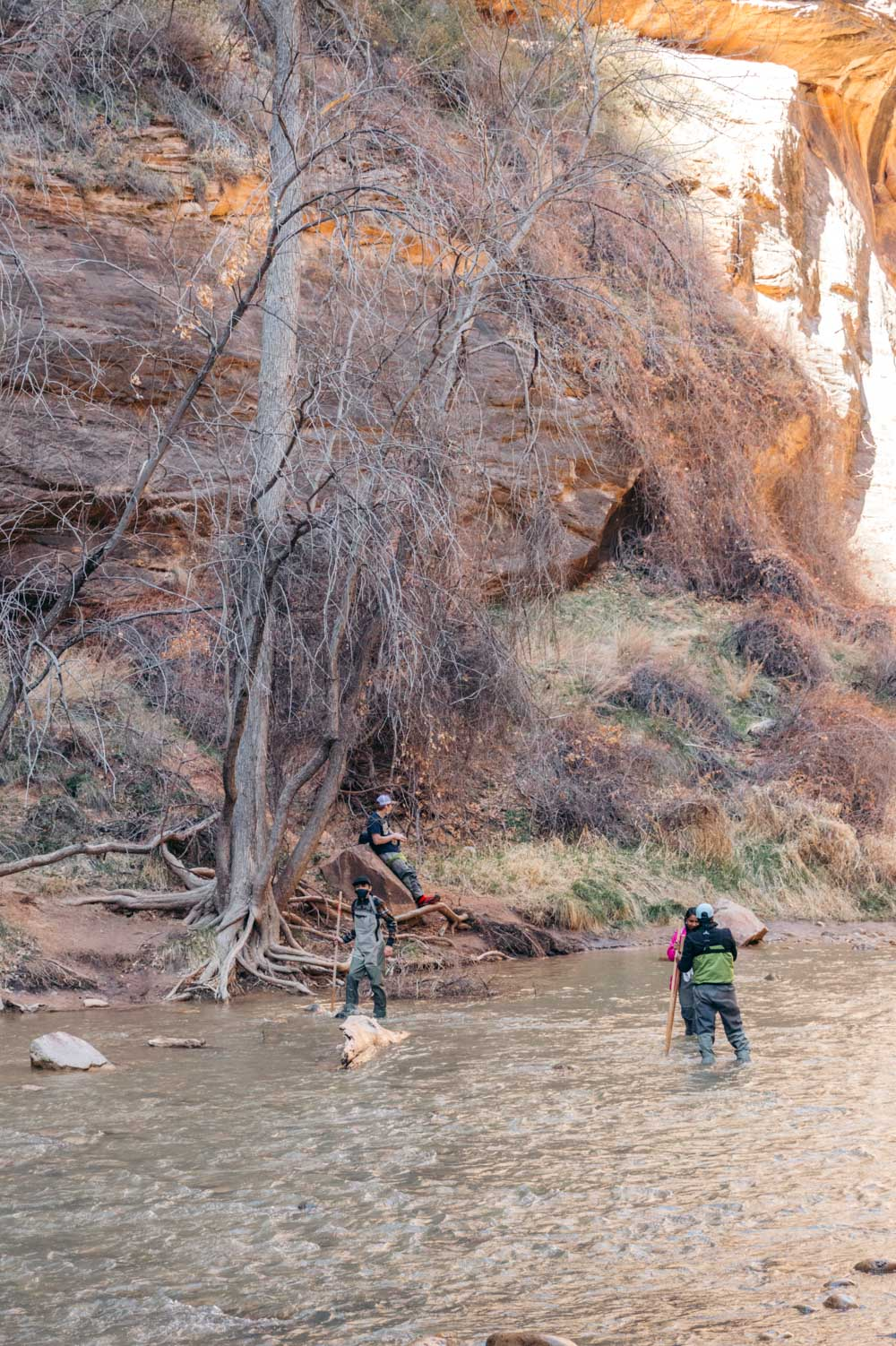 Facts and helpful tips to know before visiting Zion National Park - Roads and Destinations