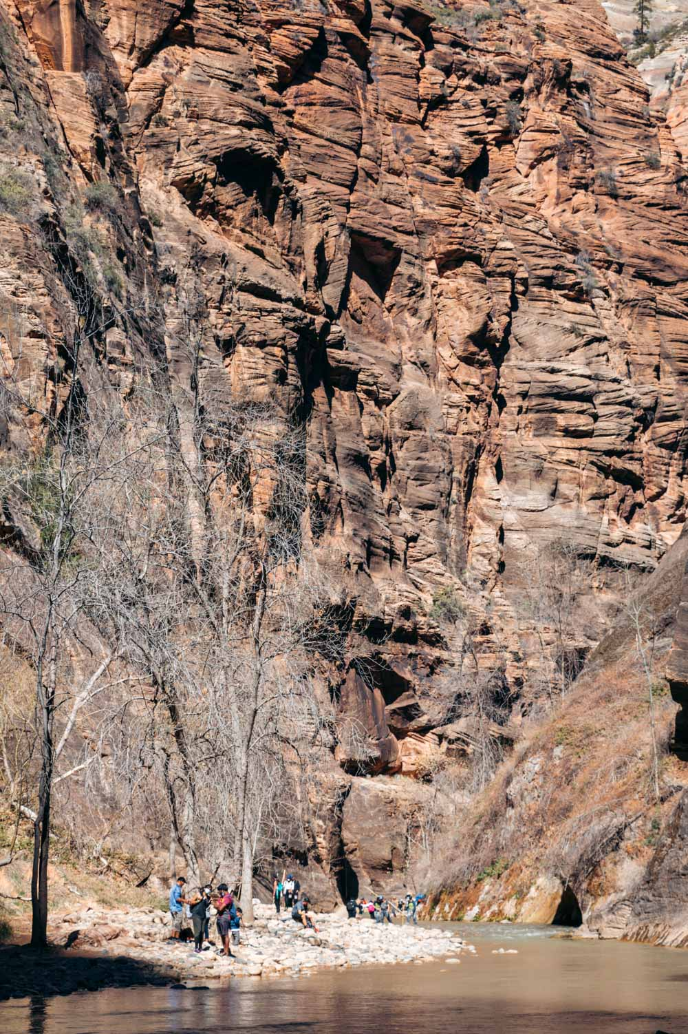 Hiking in Zion National Park - Roads and Destinations