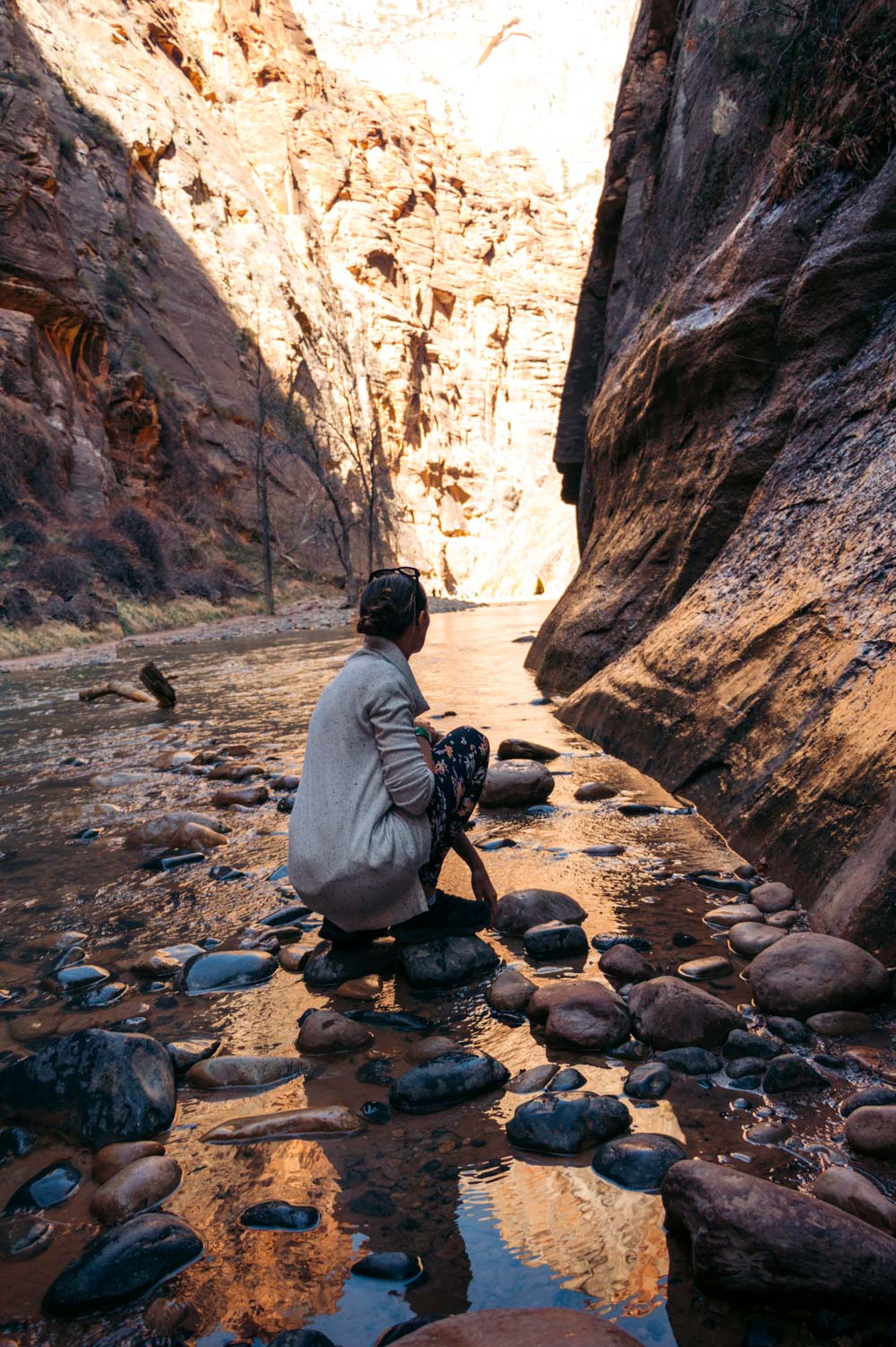 Zion Narrows - Roads and Destinations