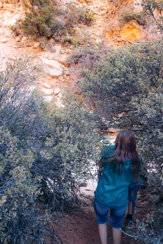 Zion Secret Trails. Shelf Canyon Hike - Roads and Destinations