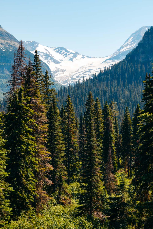 Glacier, Montana - Roads and Destinations